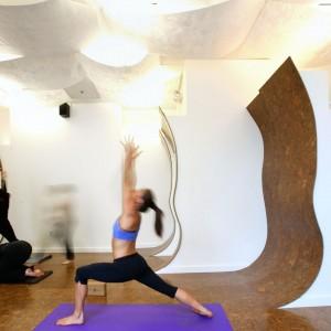 Black Lotus Yoga